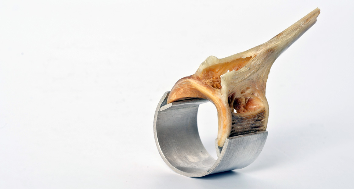 silver ring with fish bone